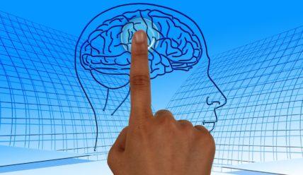 Как сохранить свой мозг молодым